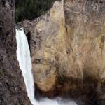 1-Yellowstone_2 110