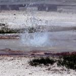 1-Yellowstone_3 015