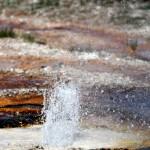 1-Yellowstone_3 035