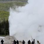 1-Yellowstone_3 062