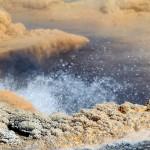 1-Yellowstone_3 115
