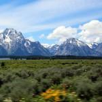 1-Yellowstone_3 200