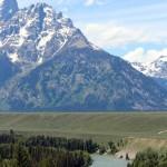 1-Yellowstone_3 221